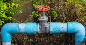 Valves are a good place to spot leaks before leaving on vacation.